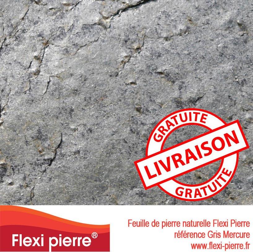 Feuille de pierre Gris Mercure, livraison gratuite
