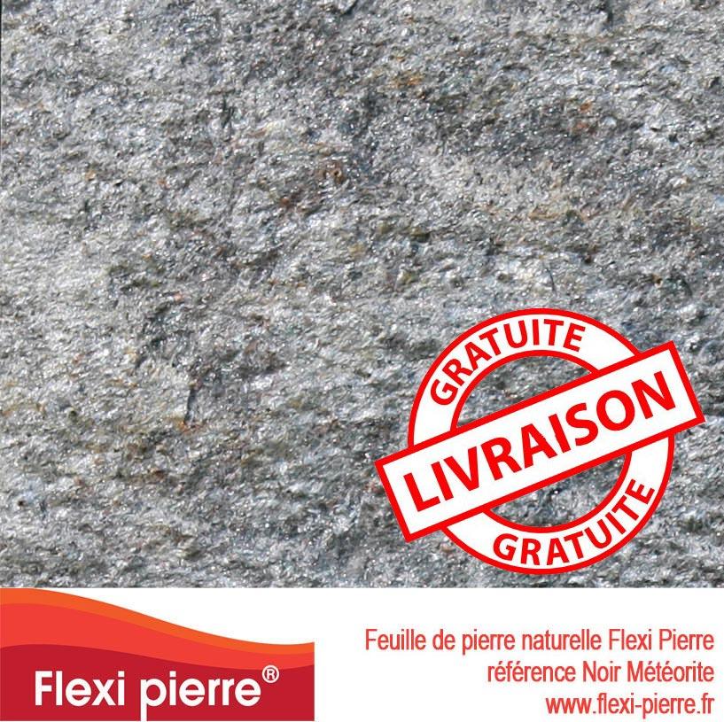 Feuille de pierre Noir Météorite, livraison gratuite